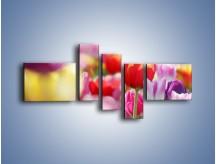 Obraz na płótnie – Boso przez tulipany – pięcioczęściowy K344W5