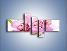 Obraz na płótnie – Biały kwiatowy stół – pięcioczęściowy K688W5