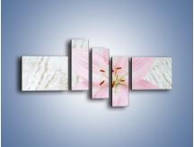 Obraz na płótnie – Cała słodycz w lilii – pięcioczęściowy K727W5