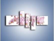 Obraz na płótnie – Cieniutkie gałązki storczyków – pięcioczęściowy K813W5