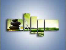 Obraz na płótnie – Bambus i źródło wody – pięcioczęściowy K930W5