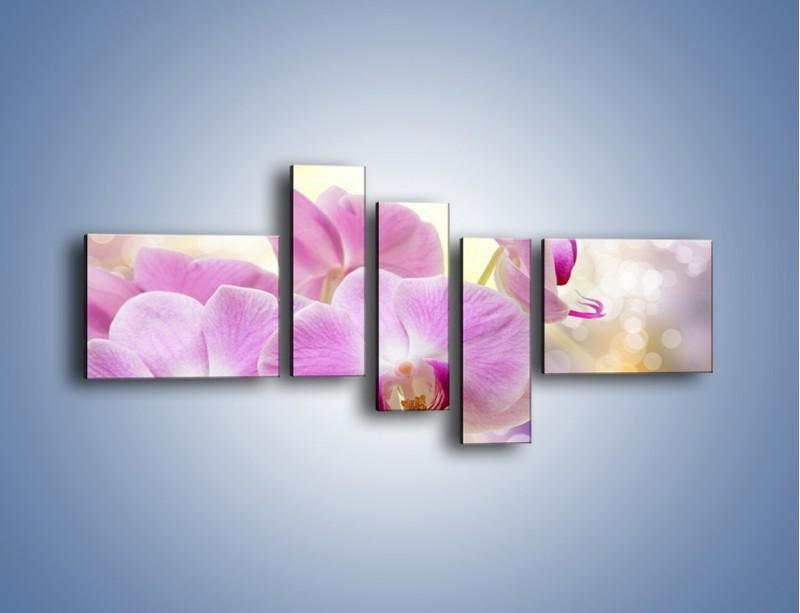 Obraz na płótnie – Lila kwiaty o poranku – pięcioczęściowy K976W5