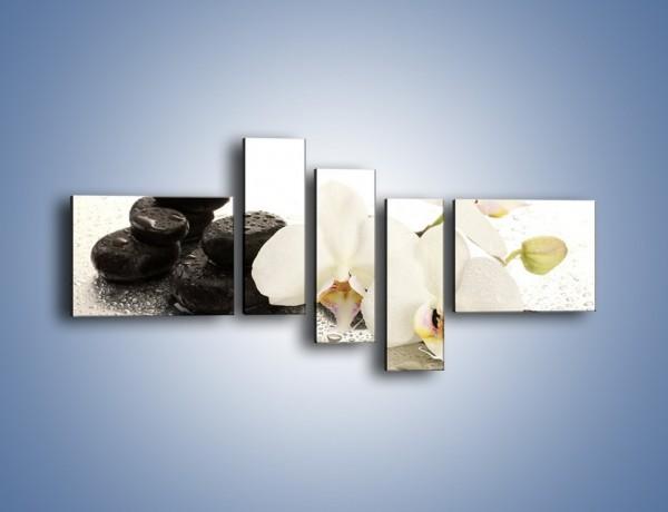 Obraz na płótnie – Mokre kwiaty i kamienie – pięcioczęściowy K986W5