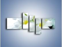 Obraz na płótnie – Białe kwiaty w potoku – pięcioczęściowy K991W5