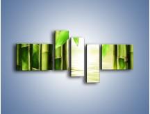Obraz na płótnie – Bambusowe liście i łodygi – pięcioczęściowy KN027W5