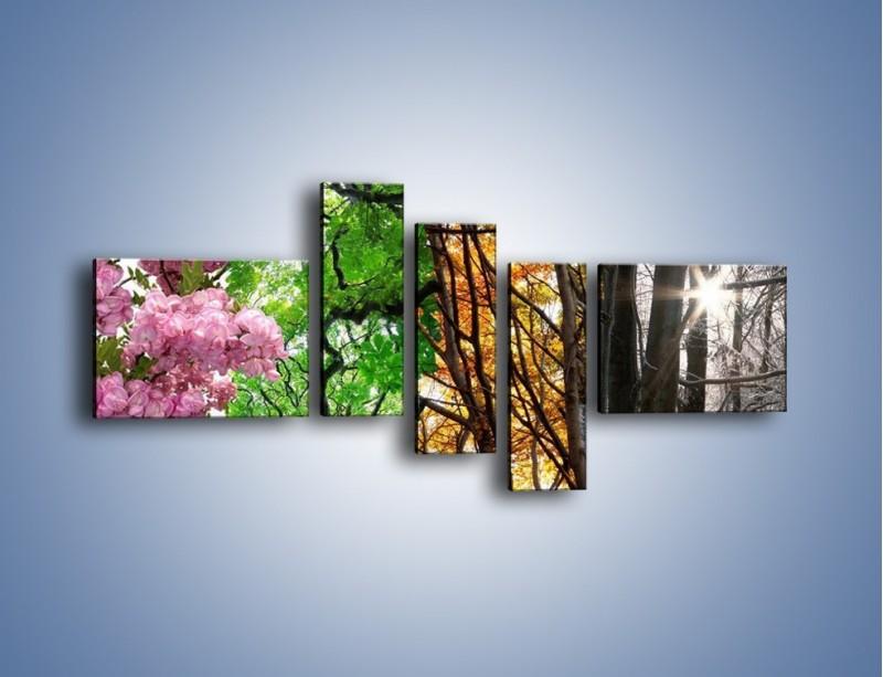 Obraz na płótnie – Drzewa w różnych kolorach – pięcioczęściowy KN037W5