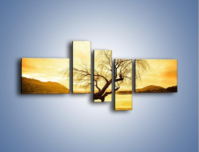 Obraz na płótnie – Pochylone drzewo w sepii – pięcioczęściowy KN1033W5
