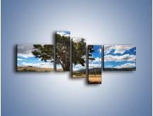 Obraz na płótnie – Cień pod rozłożystym drzewem – pięcioczęściowy KN1037W5