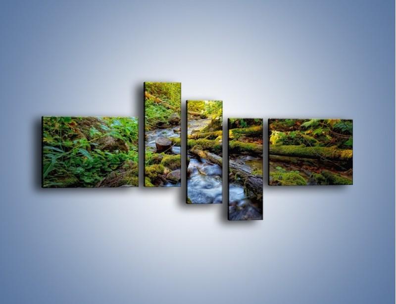 Obraz na płótnie – Drewno ścięte do wody – pięcioczęściowy KN1059W5