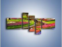 Obraz na płótnie – Aleje kolorowych tulipanów – pięcioczęściowy KN1079W5