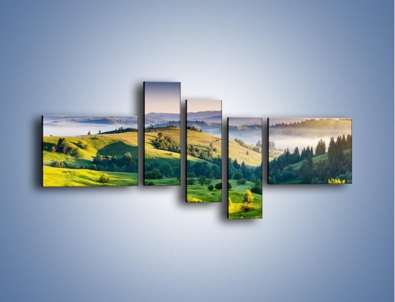 Obraz na płótnie – Tylko zieleń i góry – pięcioczęściowy KN1084W5