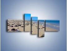 Obraz na płótnie – Całe morze kamyczków – pięcioczęściowy KN1086AW5