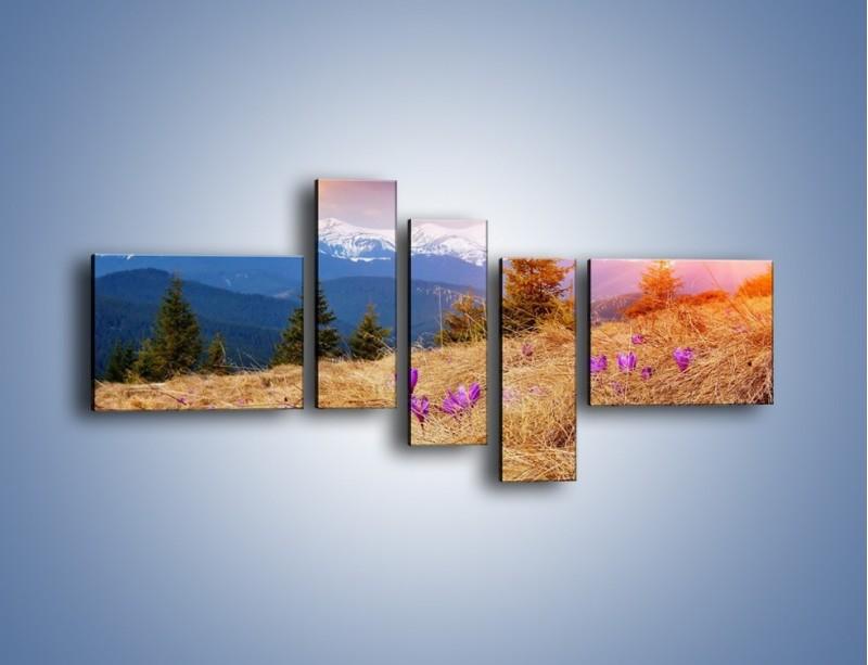Obraz na płótnie – Przebiśniegi w górach – pięcioczęściowy KN1126AW5