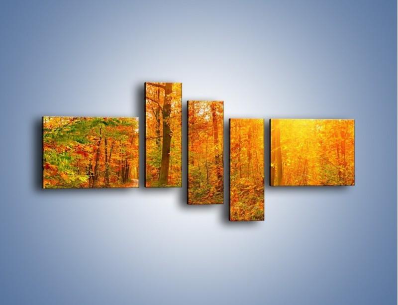Obraz na płótnie – Leśną drużką jesienią – pięcioczęściowy KN1163AW5