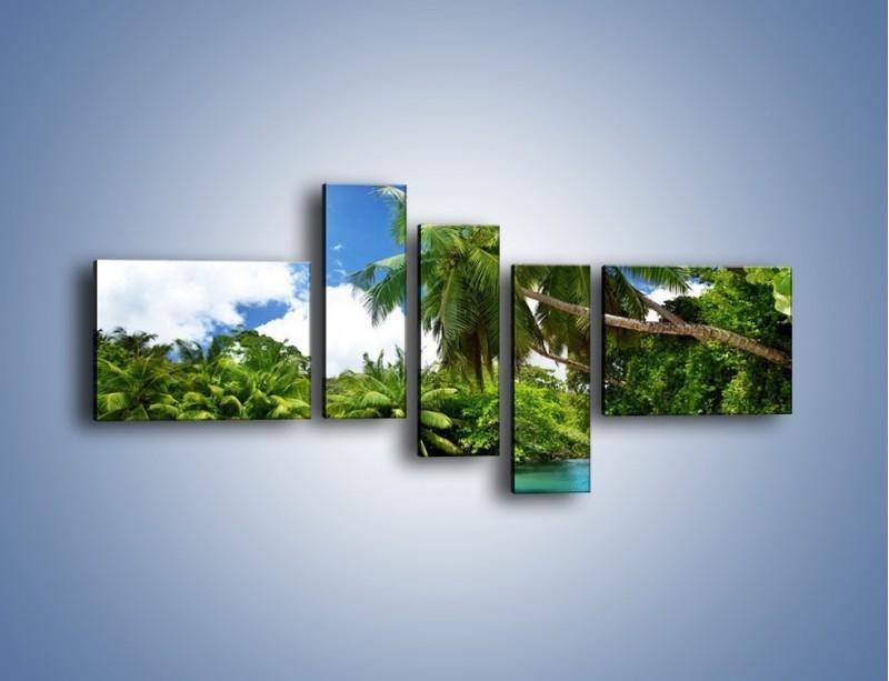 Obraz na płótnie – Rozłożone palmy i woda – pięcioczęściowy KN1168AW5