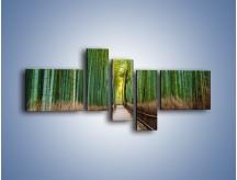Obraz na płótnie – Bambusowy las – pięcioczęściowy KN1187AW5