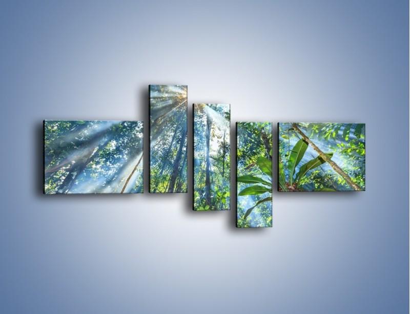 Obraz na płótnie – Dyzio marzyciel i drzewa – pięcioczęściowy KN1189AW5