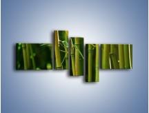 Obraz na płótnie – Bambusowe łodygi z bliska – pięcioczęściowy KN118W5