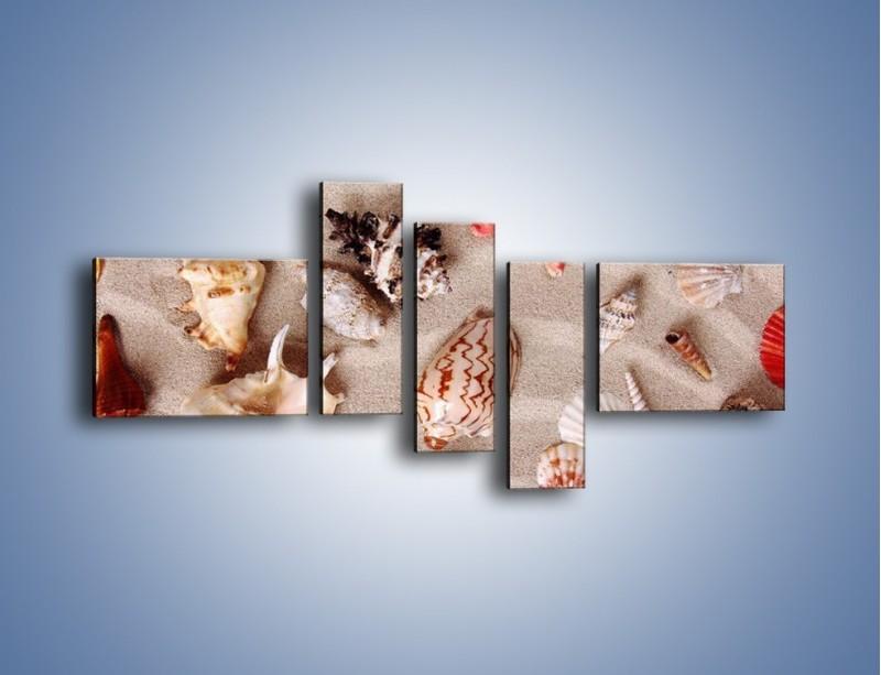 Obraz na płótnie – Kolorowe skorupiaki – pięcioczęściowy KN1214AW5
