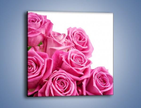 Obraz na płótnie – Różana głowa do góry – jednoczęściowy kwadratowy K211