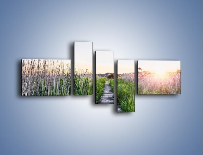 Obraz na płótnie – Kładka wśród mokradeł – pięcioczęściowy KN1248AW5