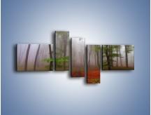 Obraz na płótnie – Budzący się lasek – pięcioczęściowy KN1285AW5