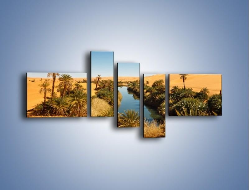 Obraz na płótnie – Woda woda na pustyni – pięcioczęściowy KN1294AW5