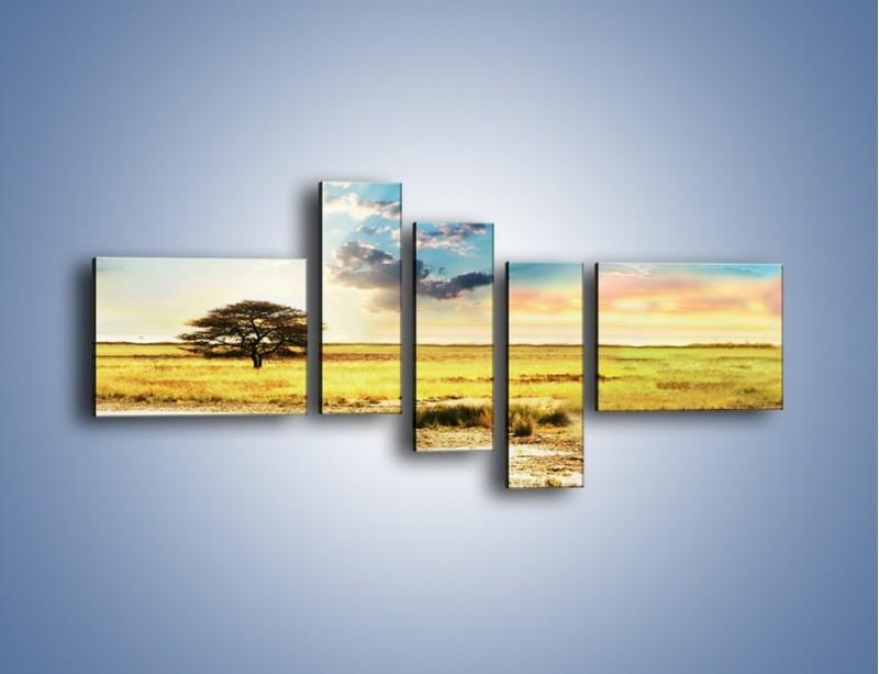Obraz na płótnie – Zebry na sawannie – pięcioczęściowy KN1298AW5