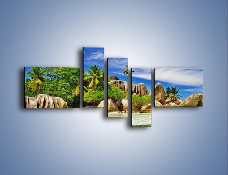 Obraz na płótnie – Tropiki i ich wysokości – pięcioczęściowy KN1306AW5