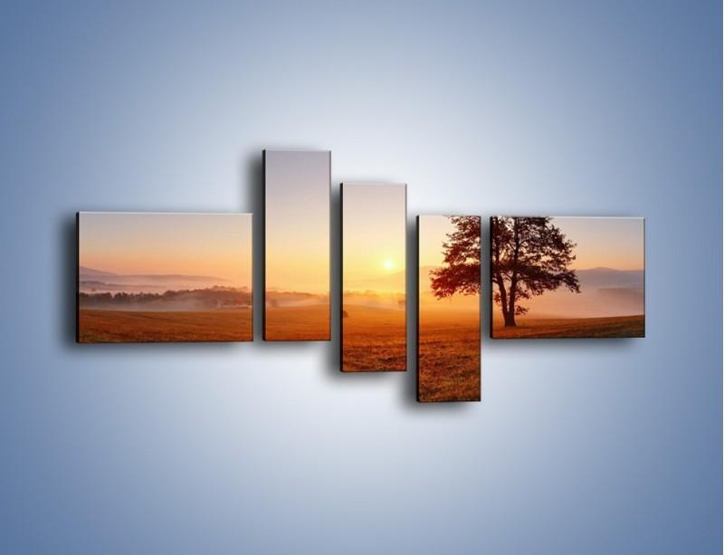Obraz na płótnie – Krajobraz utopiony we mgle – pięcioczęściowy KN1331AW5
