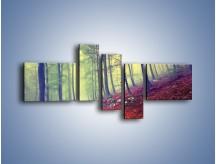 Obraz na płótnie – Bardzo wąską ścieżką leśną – pięcioczęściowy KN1335AW5