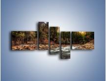 Obraz na płótnie – Chłodny dzień nad rwącym potokiem – pięcioczęściowy KN1342AW5