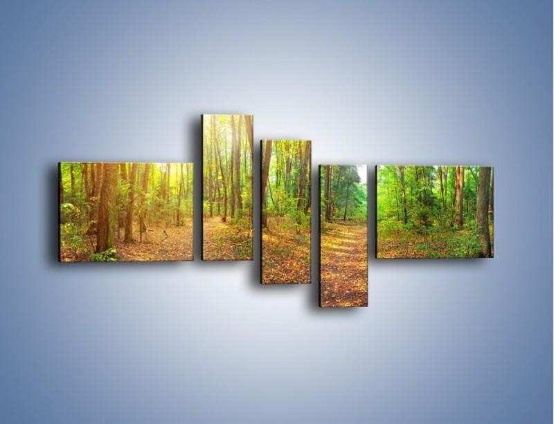 Obraz na płótnie – Przejrzysty piękny las – pięcioczęściowy KN1344AW5