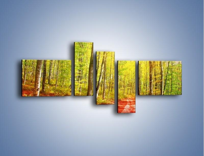 Obraz na płótnie – Brzózki liście i las – pięcioczęściowy KN1345AW5