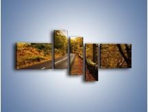 Obraz na płótnie – Asfaltową droga przez las – pięcioczęściowy KN169W5