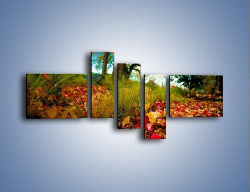 Obraz na płótnie – Droga usłana liśćmi – pięcioczęściowy KN172W5