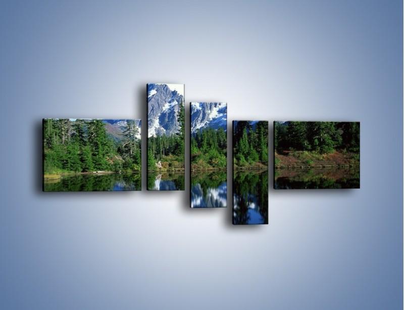 Obraz na płótnie – Zimowe pozostałości w górach – pięcioczęściowy KN225W5