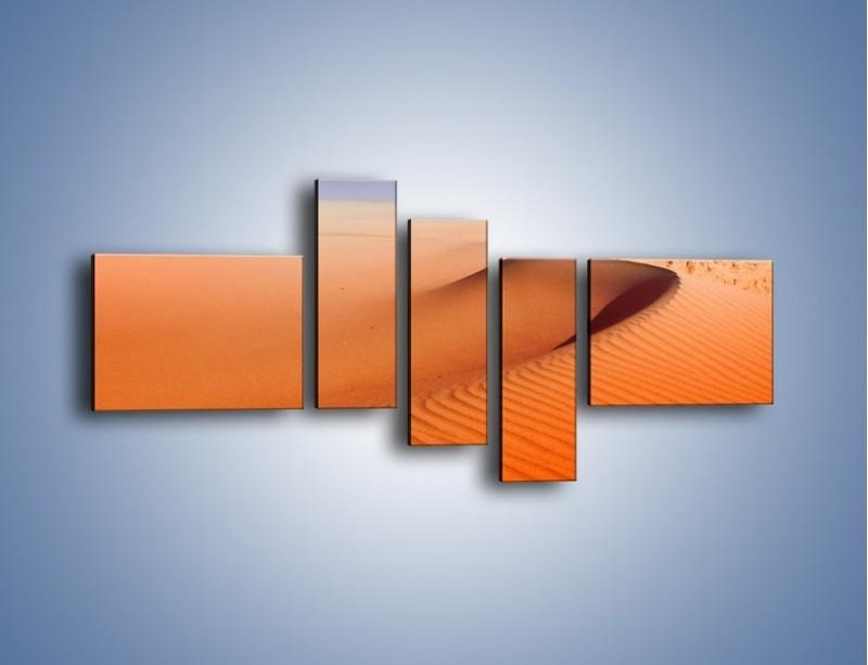 Obraz na płótnie – Pustynny żar – pięcioczęściowy KN305W5
