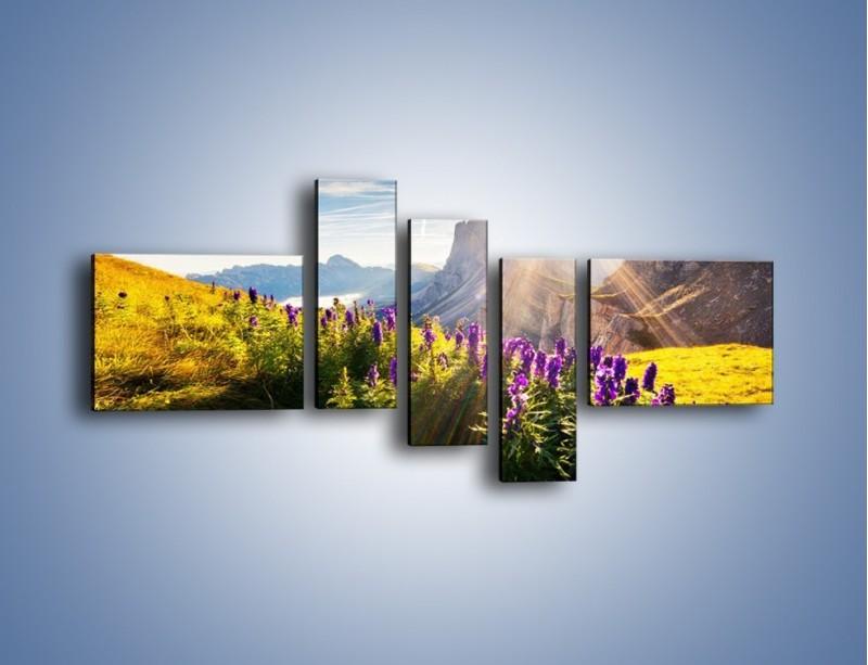 Obraz na płótnie – Góry w poświacie słońca – pięcioczęściowy KN502W5