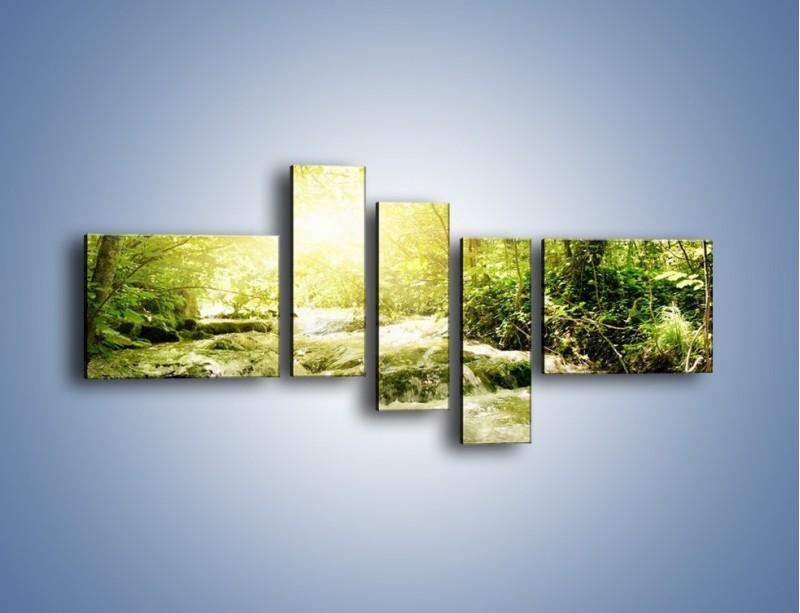 Obraz na płótnie – Wzburzony potok leśny – pięcioczęściowy KN508W5