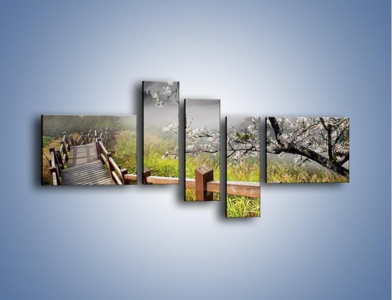 Obraz na płótnie – Drzewo wiśni i kręte schody – pięcioczęściowy KN698W5