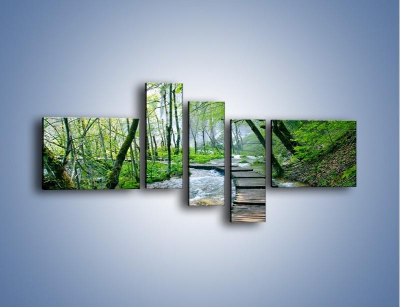 Obraz na płótnie – Drewniana kładką przez potok – pięcioczęściowy KN720W5