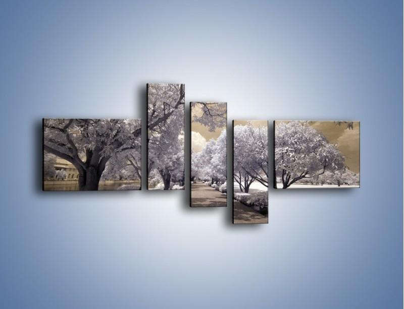 Obraz na płótnie – Parkowa aleja w sepii – pięcioczęściowy KN734W5