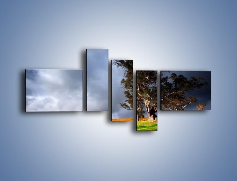 Obraz na płótnie – Burzowe chmury nad polaną – pięcioczęściowy KN748W5