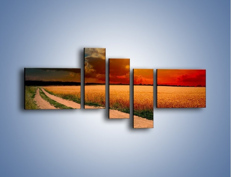Obraz na płótnie – Zbożowa polana i jej cały urok – pięcioczęściowy KN776W5