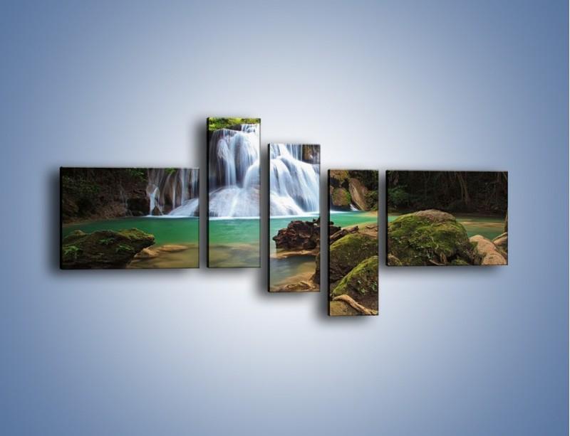 Obraz na płótnie – Drzewa schowane za wodospadem – pięcioczęściowy KN792W5