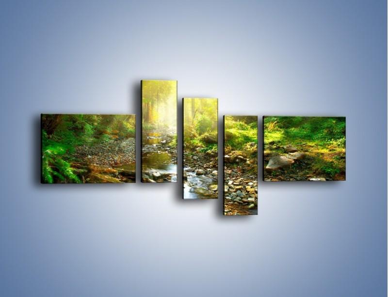 Obraz na płótnie – Kamiennym urwiskiem wśród potoku – pięcioczęściowy KN827W5