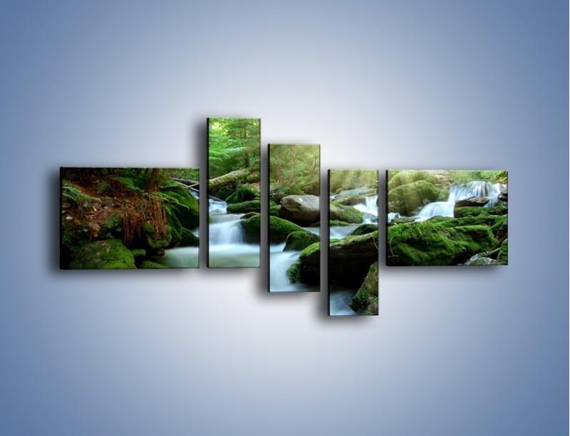 Obraz na płótnie – Silny potok w środku lasu – pięcioczęściowy KN861W5