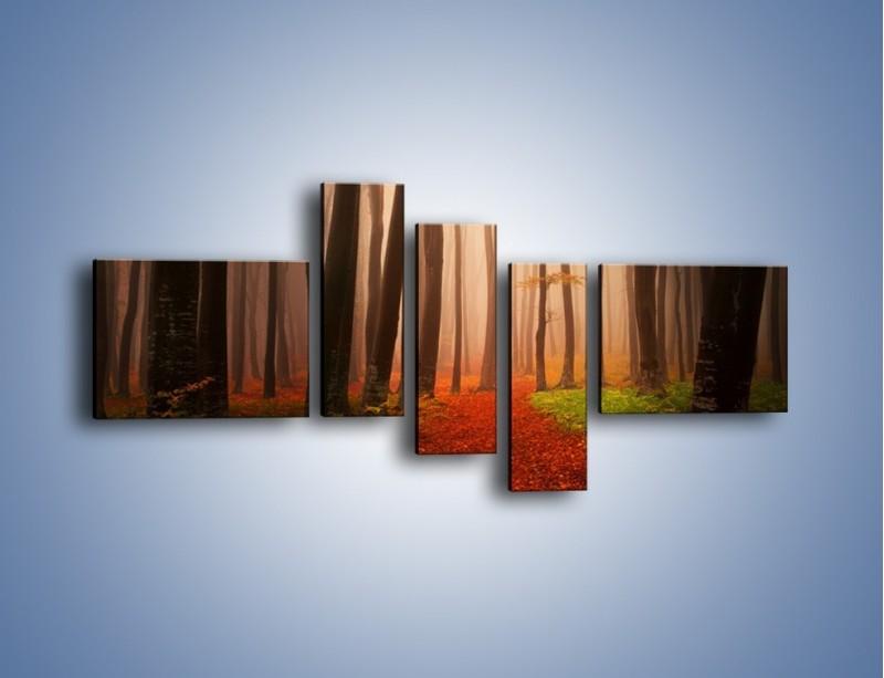 Obraz na płótnie – Las pełen tajemnic – pięcioczęściowy KN909W5
