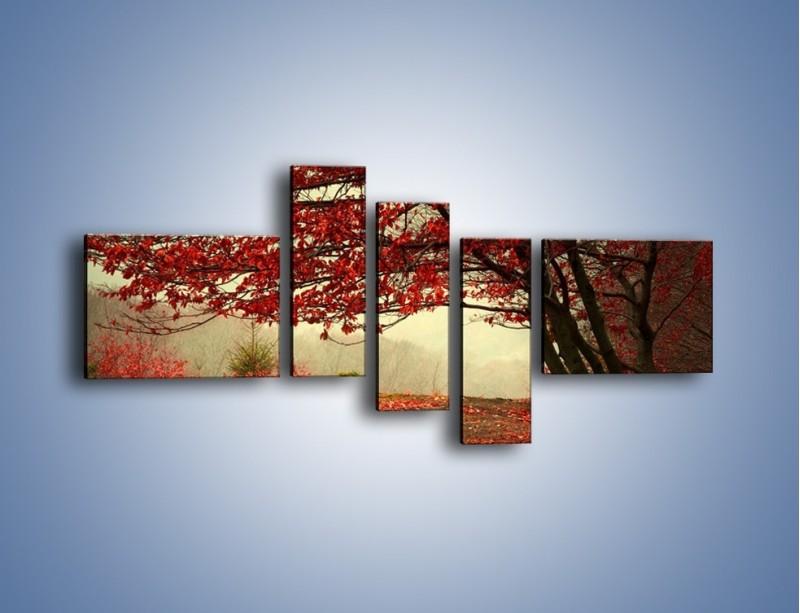 Obraz na płótnie – Spadające liście z drzew – pięcioczęściowy KN910W5
